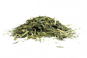 the-vert-sensha